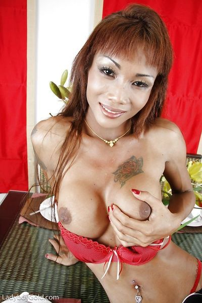 Hung Asian ladyboy em sucks dick during kinky male on shemale gangbang